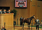 Besilu Buys Royal Delta for $8.5 Million