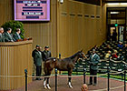 $3M Tapit Filly Sets North American Record