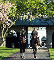 Keeneland Introduces Mobile Wagering App