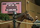 Smart Strike Colt Sells for $1M at Keeneland