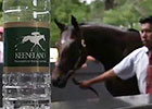 Keeneland Sept Yearling Sale: Day 3 Wrap