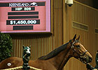 Dubawi Filly Brings $1.45M at Keeneland
