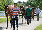 Keeneland September Sale Set to Test Market