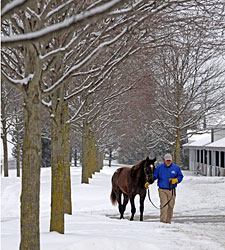 Snow, Cold Don't Stop Show at Keeneland