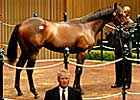 Son of Distorted Humor Goes for $1 Million