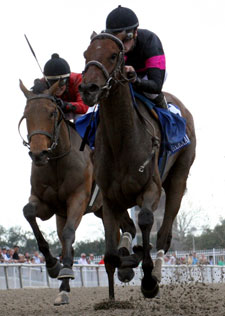 Fair Grounds Oaks Suddenly Up for Grabs