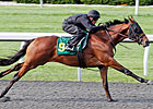 Works Fast During Keeneland Under Tack Show