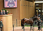 Keeneland Juvenile Sale Off to Strong Start