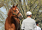 Feedback Positive Prior to Keeneland 2YO Sale