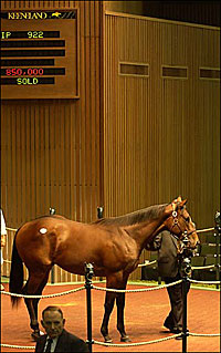 Keeneland Sale Remains Strong after Four Days