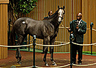 Rea Lands Unbridled's Song Colt for $1.1M