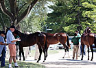 Ladies Day at Keeneland; Sale Gains Continue