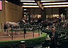 Keeneland September Sale: Day 2 Wrap