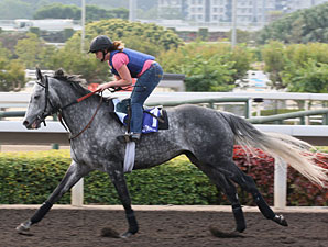 Kip Deville Has Big Chance in HK Mile