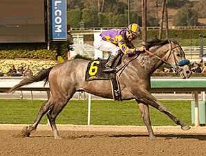 Kobe's Back Stylish Winner of San Vicente