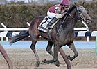 Last Gunfighter Draws Clear in Excelsior