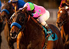 Liaison Back in Comfort Zone for Affirmed
