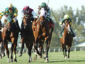 Turf Specialist Lime Rickey to Wood