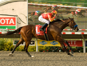 Solid CashCall Futurity Field Taking Shape