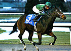 Mac the Man Wins Turfway Prevue