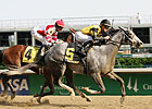 Macho Again Back in Preakness Picture