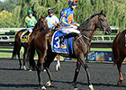Magician to Stand at Ashford Stud in 2015