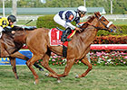 Wise Dan, Main Sequence Top Turf Classic Noms