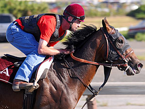 Belmont Doings: Plenty of History to be Made