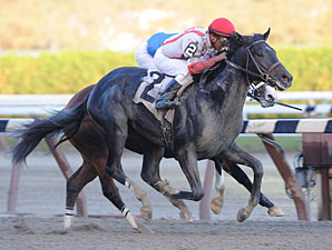 Remsen: Strong Pedigrees, Light Experience