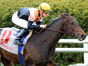 Marketing Mix Returns in Distaff Turf Mile