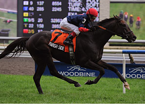 Marsh Side Sails Again at Woodbine