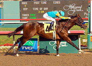 'Drama' Tops CashCall Futurity