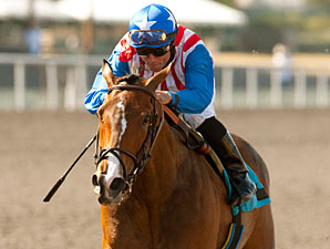May Day Rose Uses New Tactic in Railbird Win