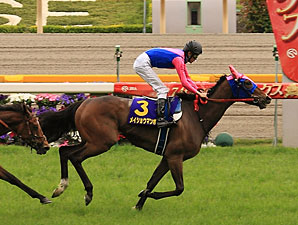 Meisho Mambo Roars Back to Win Japanese Oaks