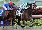 Merry Meadow Takes Sugar Swirl for Castellano