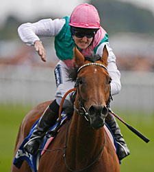 Midday Cruises in Dramatic Yorkshire Oaks