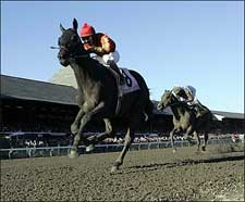 Midnight Lute Favored Among 11 in Breeders' Cup Sprint