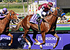 Champion Midshipman Retired