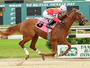 OBS Hosts 'Day of Champions' Races Jan. 21