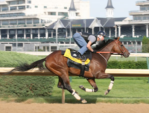 Borel: 'We're Going to Win' Belmont Stakes