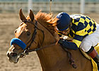 Misremembered Scores for Breeder Bob Baffert