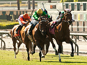 Miss Serendipity Upset Winner in Gamely