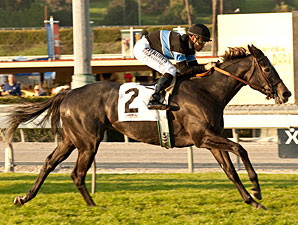 Buena Vista Mile No Issue for Mizdirection