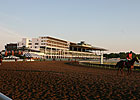 Monmouth Park Meet Enjoys Record Gains