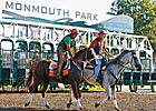 Attendance, Handle Gains at Monmouth Park