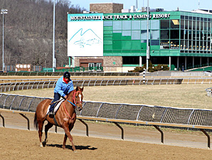 Wagering, Purses Up at Mountaineer Meet