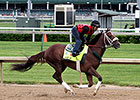 Mr. Z Camp Still Undecided on Preakness