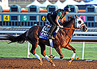 Southwest Starters Head Busy Oaklawn Worktab