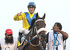 No Medication for Mubtaahij in Kentucky Derby