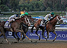 Mucho Macho Man Huge in 'Millions' Classic